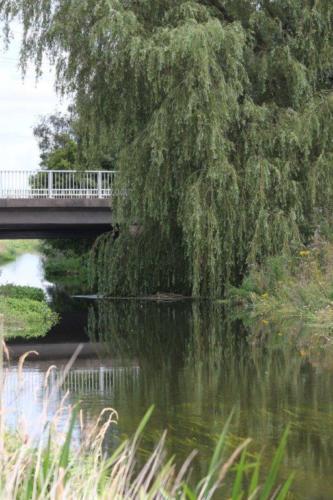 River Torne Bridge Auckley